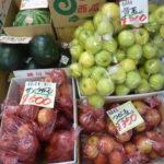 本田青果 リンゴ大特売